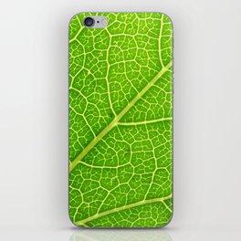 Green Leaf Veins 04 iPhone Skin