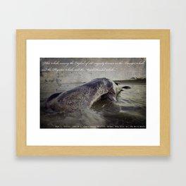 Cetology I Framed Art Print