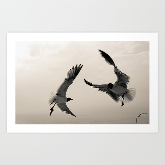 Gulls. Art Print