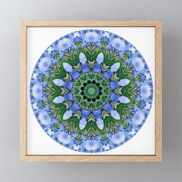 Blue Iris Mandala Framed Mini Art Print