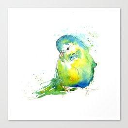 Budgie Series - IV Blue/Green Canvas Print