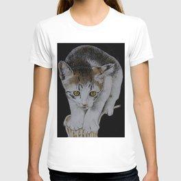 Focused cat T-shirt