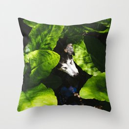 Fred in the Skunk Cabbage Throw Pillow
