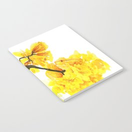 yellow trumpet trees watercolor yellow roble flowers yellow Tabebuia Notebook