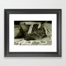 Cat Nap with Diesel Framed Art Print