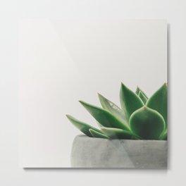 Minimal Cactus - Cacti Photography Metal Print