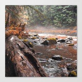 Peaceful Autumn Brook Canvas Print