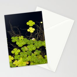 Water Clover Stationery Cards