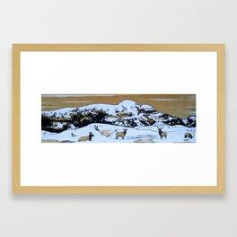 Winter Indian Framed Art Print