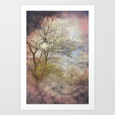 Spring Clouds Art Print