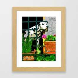 Tuscan Dalmatian - Italy Framed Art Print