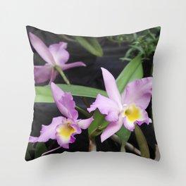 Cattleya Horace Maxima Orchid Throw Pillow