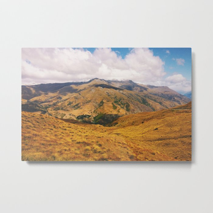 Queenstown Tussocks Metal Print
