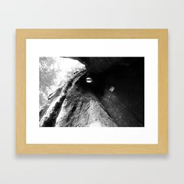 Center of a Redwood Framed Art Print