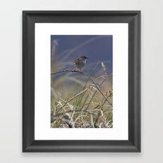 Dunnock Framed Art Print