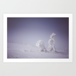 Snowy creatures - Landscape and Nature Photography Art Print