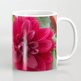 Maroon Dahlia Dahlietta Coffee Mug