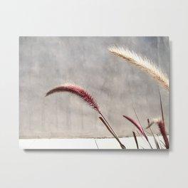 brentwood weeds Metal Print