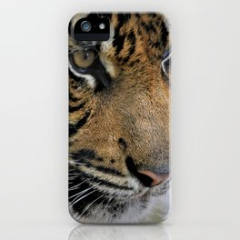 Determined Tiger iPhone Case