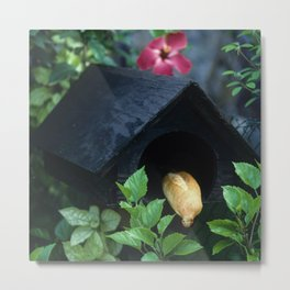 Fresh French Bread Delivery in Tahiti Metal Print