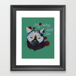 Resting Cat Face Framed Art Print