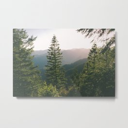 Forest XV Metal Print