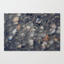 River Pebbles Canvas Print