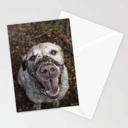 Oh Hank Stationery Cards