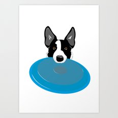 Border Collie - Disc Dog 2 Art Print