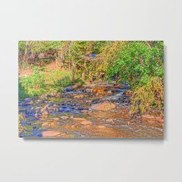 Handpainted by Nature Metal Print