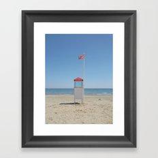 Sentinel Framed Art Print