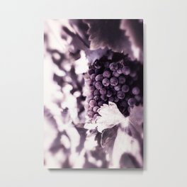 Grapes into Wine Metal Print