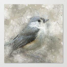 Tufted Titmouse Bird Canvas Print