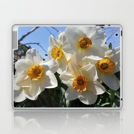 Sunny Faces of Spring - Gold and White Narcissus Flowers Laptop & iPad Skin