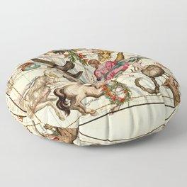Globi coelestis Plate 5 Floor Pillow