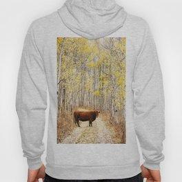 Cow in aspens Hoody