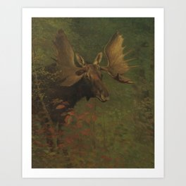 Vintage Painting of a Bull Moose Art Print