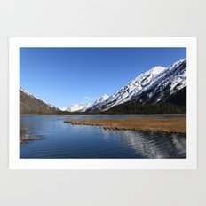 Tern Lake Art Print