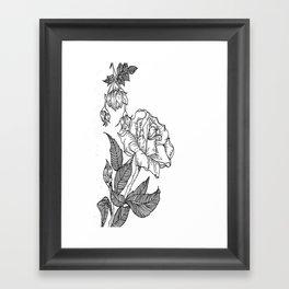 I Dont Like You Framed Art Print