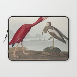 Scarlet Ibis from Birds of America (1827) by John James Audubon (1785 - 1851 ) etched by Robert Havell (1793 - 1878) Laptop Sleeve