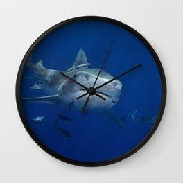 Tiger Shark 1 Wall Clock