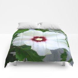 White Hibiscus Flower Ruffle Comforters