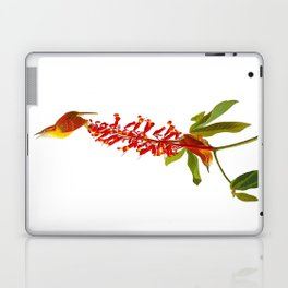 Great Carolina Wren Laptop & iPad Skin