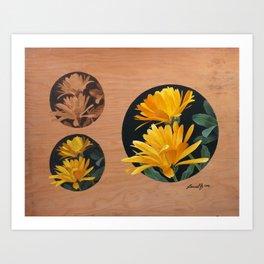 Study of Calendula Blossoms Art Print