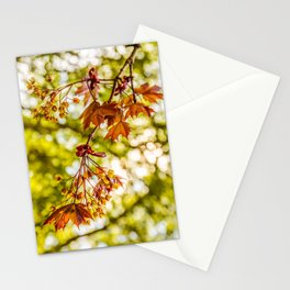 Maple blooms Stationery Cards