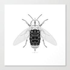 entomology 03. (iii) Canvas Print
