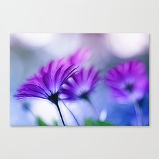 Rainbow Flower Canvas Print