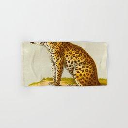 Leopard Henri Milne-Edwards, Alphonse Milne-Edwards, Hurt, illustration. - 1868 Hand & Bath Towel