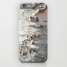 Full frame of birch bark tree detailed texture in close-up iPhone Case