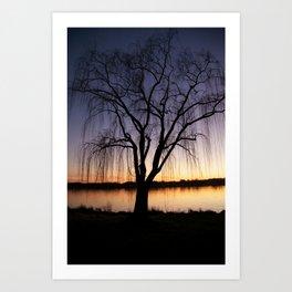 Sunset Silhouette  Art Print